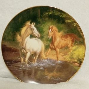 Franklin Mint Collector Plate